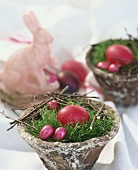 Easter nest of Irish moss with eggs and lamb