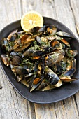Mussels with herbs in white wine and cream