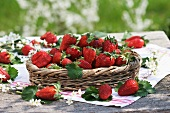 Fresh strawberries in small basket surrounded by sloe blossom