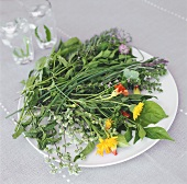 Mixed herbs and flowers on a plate