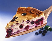 A piece of quark cake with blueberries
