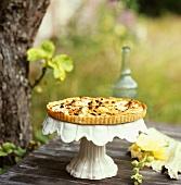 Apple and walnut tart with raisins