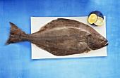 A halibut with halved lemon on board