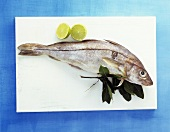 A haddock with lime and sprig of bay on kitchen board