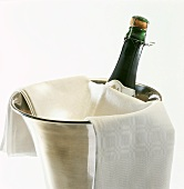 A bottle of Prosecco in champagne cooler