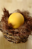 A yellow Easter egg in small basket with feathers