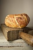 A bacon flatbread