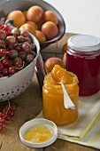 Berry jelly and apricot jam