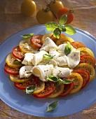 Caprese ai pomodori gialli (Red & yellow tomatoes & mozzarella)