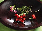 A sprig of rose hips in a wooden bowl