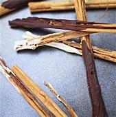 Chocolate-coated cinnamon sticks