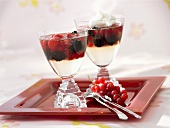 Champagne jelly with mixed berries