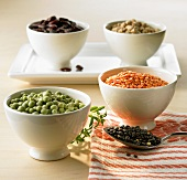 Various kinds of pulses in small bowls