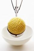 Vanilla ice cream in ice cream scoop