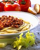 Macaroni alla bolognese