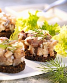 Matje herring tartare on pumpernickel rounds