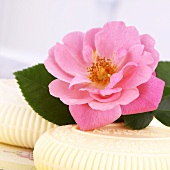 Wild rose on rose soap
