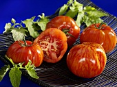 Tiger tomatoes in a dish