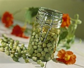 Nasturtium seeds pickled in alcohol