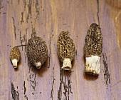 Four morels on wooden background