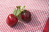 Pair of cherries on a checked cover