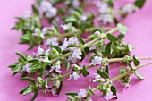 Flowering thyme sprigs