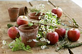 Terracotta pots, apples and chamomile on a wooden table