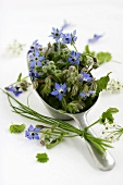 Small scoop filled with borage flowers