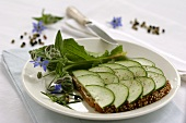 Open cucumber sandwich with black pepper, borage & rosemary