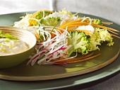 Crudités (raw vegetables) with herb dip