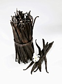 A bundle of vanilla pods and individual pods with flower