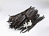 A bundle of vanilla pods and loose pods with two flowers