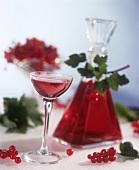 Redcurrant liqueur
