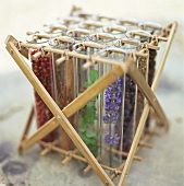 Herbs and spices in test tubes