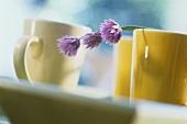 Three mugs and chive flowers