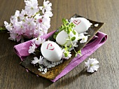 Three boiled eggs in a dish with salt and blossom