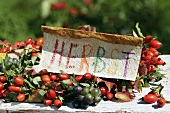 Autumn wreath of rose hips & grapes with sign ('Autumn' in German)