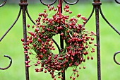 Moss wreath with rose hips