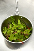 Young spinach in a pan