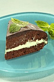 A slice of chocolate cake with mint