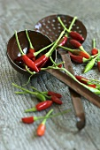 Chillies with ladle and skimmer