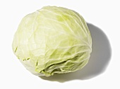 A white cabbage