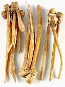 Finger root (Krachai)