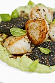 Lukewarm black pudding and scallop salad on pea puree