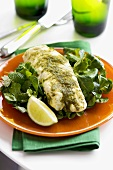 Cod with herbs on wild herb salad