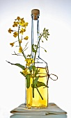 Half-filled bottle of rapeseed oil with flowers