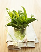 Fresh ramsons (wild garlic) leaves and flowers in a glass