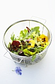 Mixed herb and flower salad in a sieve