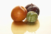 Plums and a greengage
