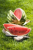 A watermelon with slices cut for a picnic